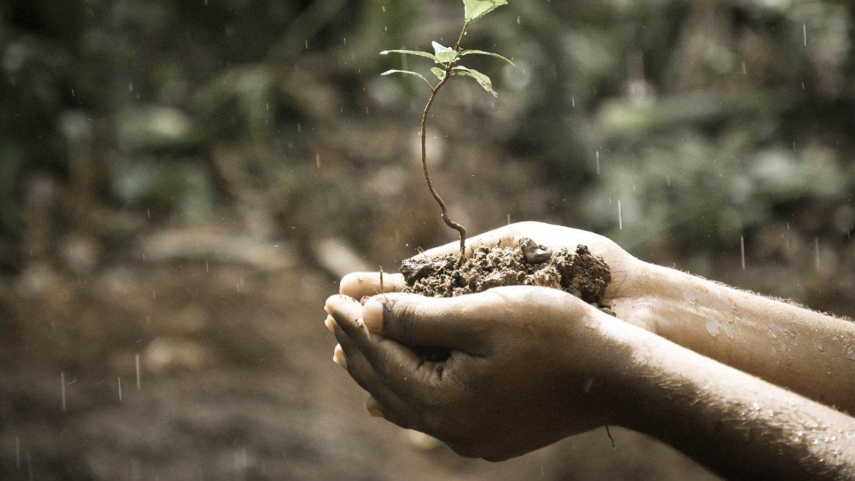النمو الروحى