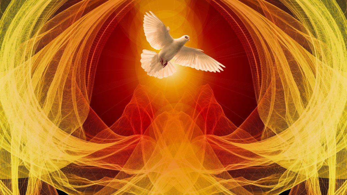 نتائج الملئ بالروح القدس