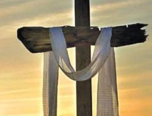 كلمة الصليب